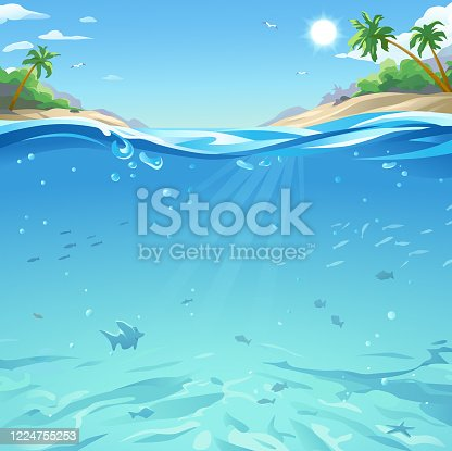 istock Tropical Sea Under And Above Water Surface 1224755253