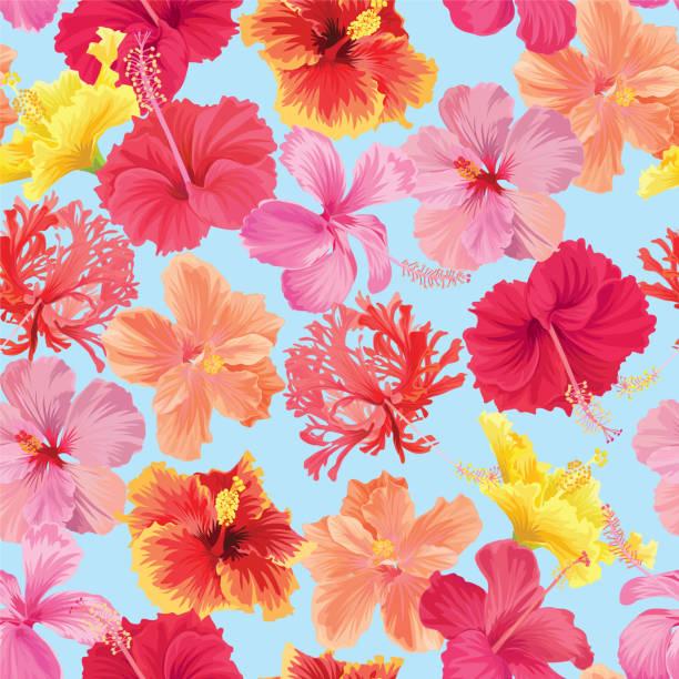 tropischen musterdesign hibiscus syriacus blumen auf weißem hintergrundvorlage. - hibiskusgarten stock-grafiken, -clipart, -cartoons und -symbole