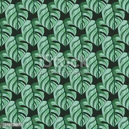 istock Tropical seamless pattern on dark background. Abstract texture decoration with real leaf monstera green color. 1312738973