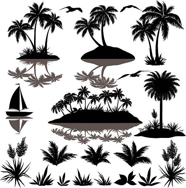 bildbanksillustrationer, clip art samt tecknat material och ikoner med tropical set with palms silhouettes - ö