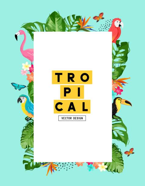 Tropischer Sommer-Hintergrundrahmen Layout – Vektorgrafik