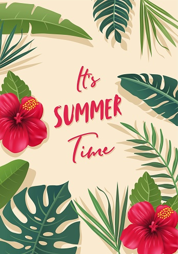 Tropical Summer Design Background