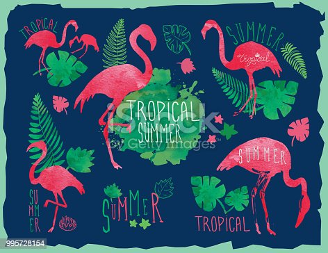 Tropical summer hand drawn set with flamingos and tropical elements
