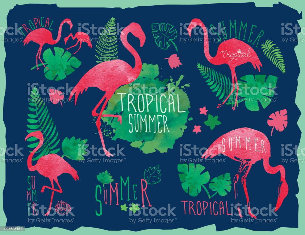 Tropical summer hand drawn set with flamingos and tropical elements vector art illustration