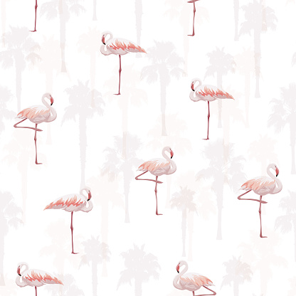 Tropical summer seamless pattern with flamingo birds, vector illustration