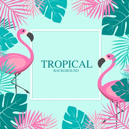 Tropical Summer with pink flamingos and Palm Leaves Banner.vector illustration