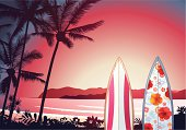Tropical sunset with surfboards.