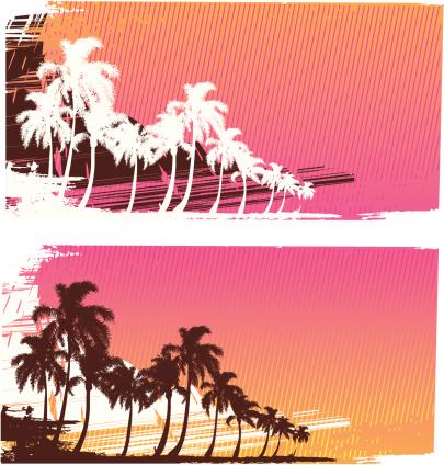 Tropical surf landscape