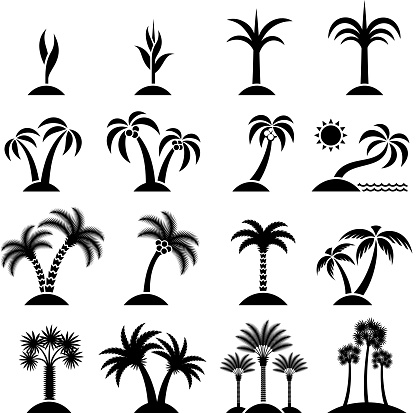 Tropical Tree Collection black & white vector icon set