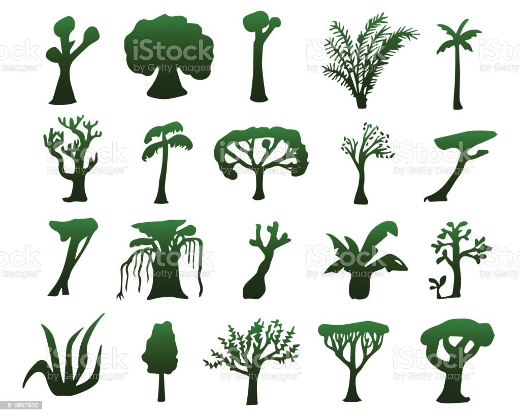 Tropical trees hand-drawn silhouettes. Green silhouettes of exotic plants isolated vector art illustration