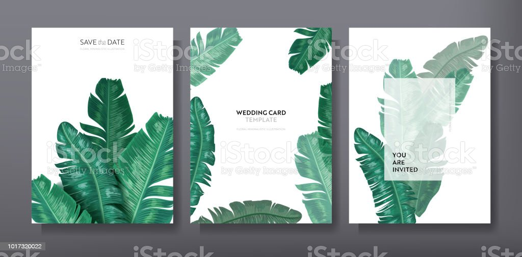 Tropical trendy greeting or invitation card template design, set of poster, flyer, brochure, cover, party advertisement, dark green palm leaves in vector royalty-free tropical trendy greeting or invitation card template design set of poster flyer brochure cover party advertisement dark green palm leaves in vector stock illustration - download image now