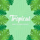 Tropical Vector Background Design Illustration. Tropical leaves Vector flat design illustration. Abstract Tropical Summer background design template for banner, pattern, invitation, poster, brochure.