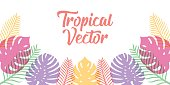 istock Tropical Vector Background Design Illustration. Tropical leaves Vector flat design illustration. Abstract Tropical Summer background design template for banner, pattern, invitation, poster, brochure. 1249328889