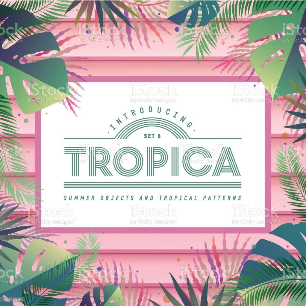 Tropical vector banner vector art illustration