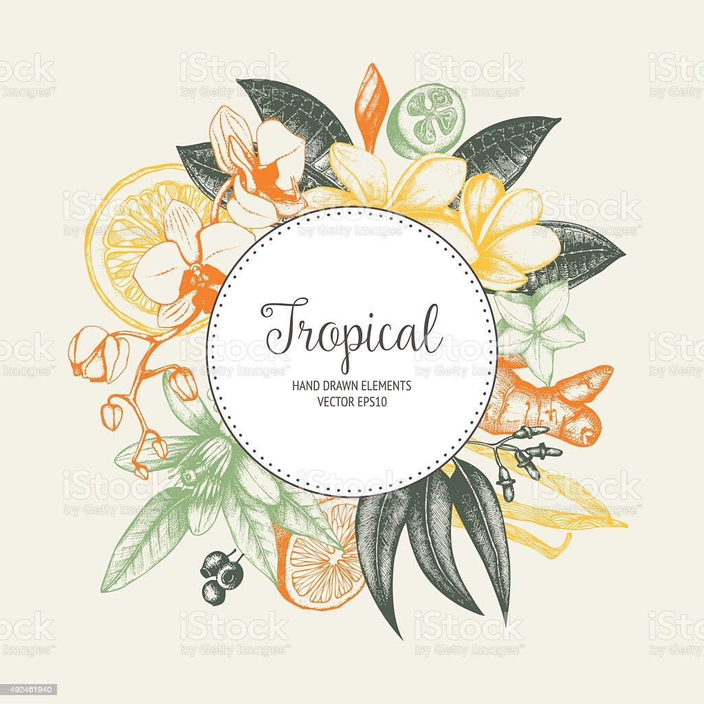 Tropical vector design vector art illustration