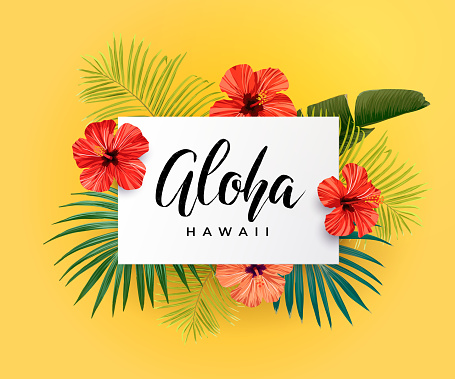 Tropical vector design with green palm leaves, hibiscus flowers, pineapples and hand drawn Aloha inscription. Summer hawaiian illustration.