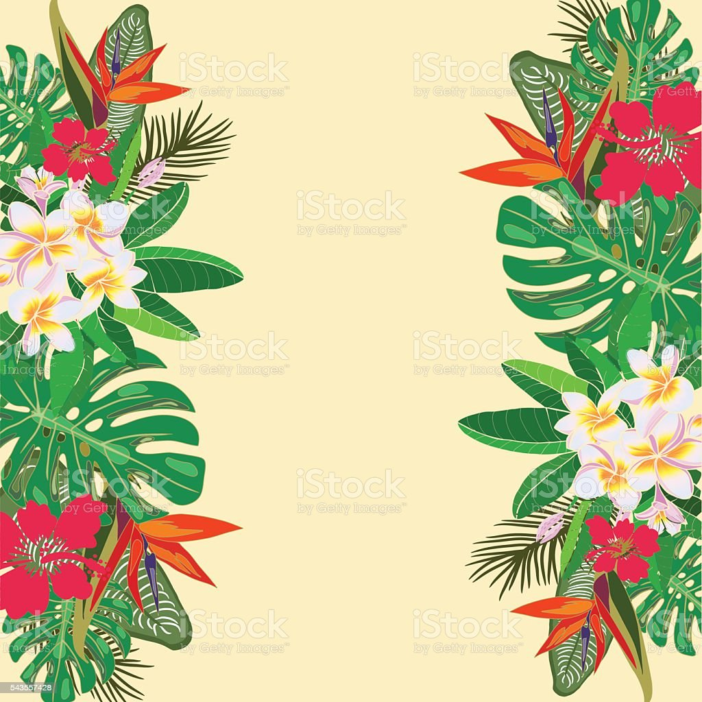 Рисунки с экзотическими цветами