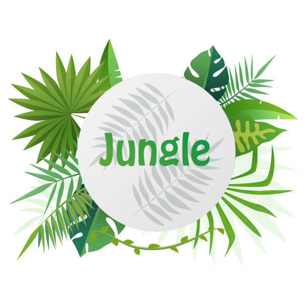 tropical vector template banner illustration. exotic plants background, rainforest design with tropic leaves. - jungle stock illustrations