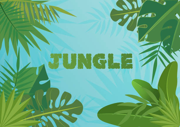 Tropical vector template banner Illustration. Exotic Plants on bblue sky background, rainforest design with tropic leaves. Tropical vector template banner Illustration. Exotic Plants on bblue sky background, rainforest design with tropic leaves banana borders stock illustrations