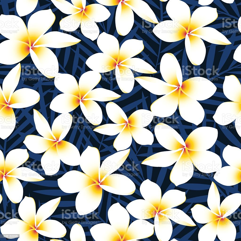 Tropical white frangipani plumeria flower seamless pattern stock tropical white frangipani plumeria flower seamless pattern royalty free tropical white frangipani plumeria flower seamless izmirmasajfo Choice Image