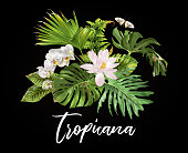 Vector botanical banner with tropical leaves orchid flowers, lotus and butterfly on black background. Design for cosmetics, spa, health care products, travel company. Can be used as summer background