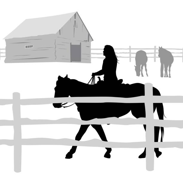 trot around the field - clip art of a black and white barn stock illustrations, clip art, cartoons, & icons