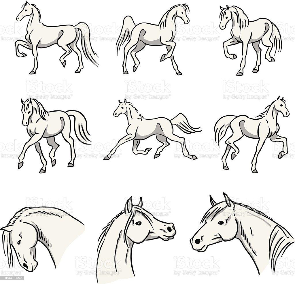 Trotting Arabian Horses vector art illustration