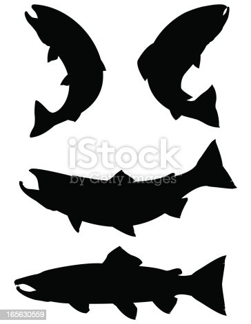 vector illustration of Salmon and Trout silhouettes.