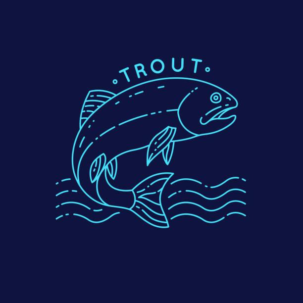 illustrazioni stock, clip art, cartoni animati e icone di tendenza di trout fish jumping out of the water - trout
