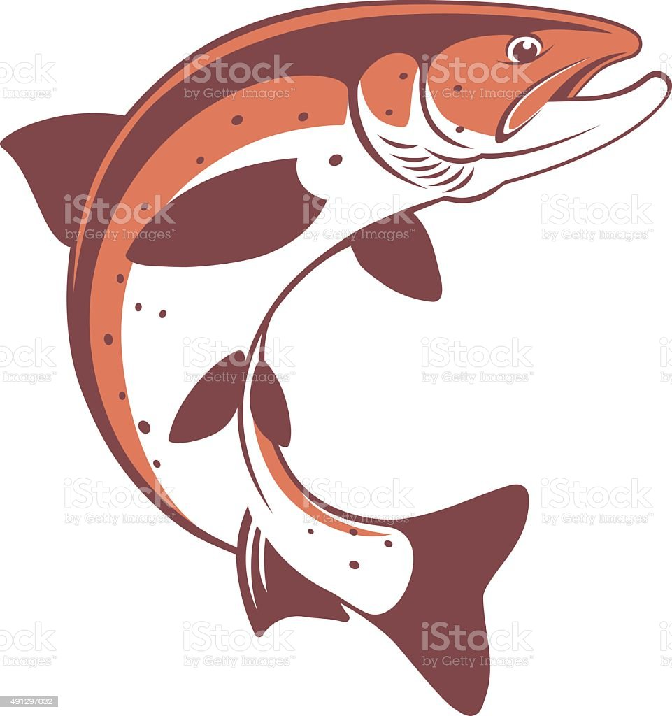 trout vector art illustration