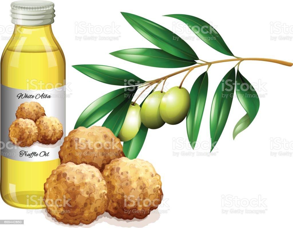 Truffle oil in bottle and fresh vegetables vector art illustration