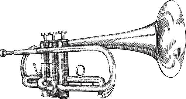 stockillustraties, clipart, cartoons en iconen met trumpet - blaasinstrument