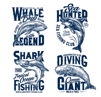Tshirt prints with shark, killer and blue whales
