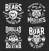 Tshirt prints with bear, boar, mad cat and gorilla vector mascots for sports team uniform apparel design. Isolated labels with wild animals and typography, t shirt prints or emblem for sport club set