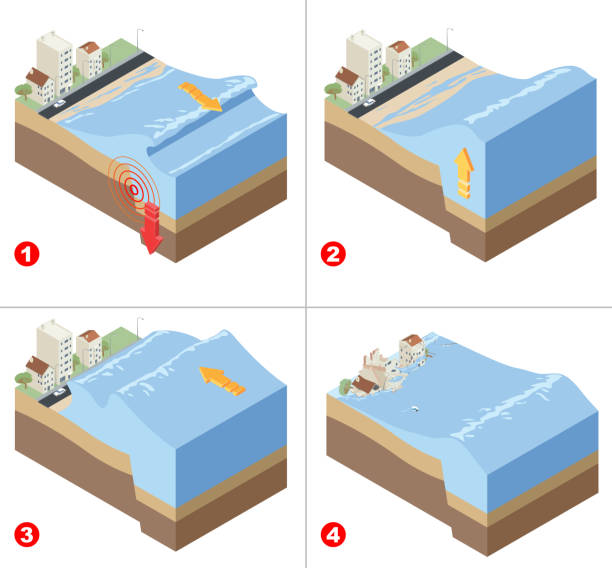 tsunami disaster infographic - tidal wave stock illustrations, clip art, cartoons, & icons