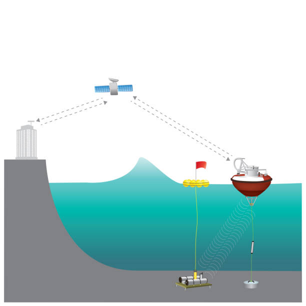 A tsunami warning system (TWS) is used to detect tsunamis in advance and issue warnings to prevent loss of life and damage. Illustration. vector art illustration