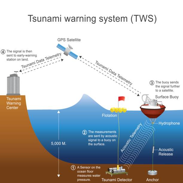 tsunami warning system. vector graphic. - tidal wave stock illustrations, clip art, cartoons, & icons