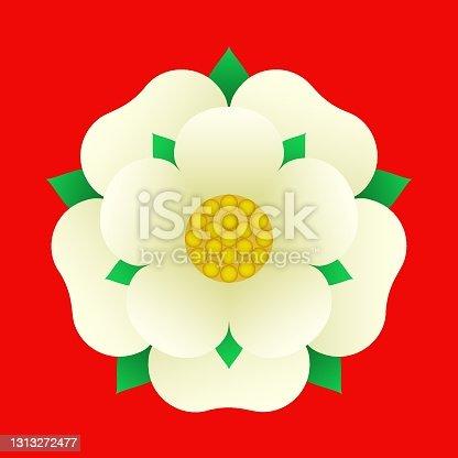 istock Tudoe rose of Englnd vector illustration. 1313272477