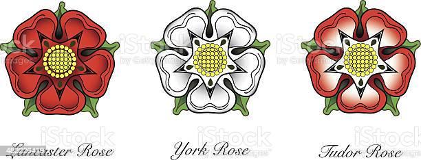 Tudor rose vector id483226419?b=1&k=6&m=483226419&s=612x612&h=2dmfyb0i2skt2euyonbaz1xmp n2njqw7zaeghzjnzy=