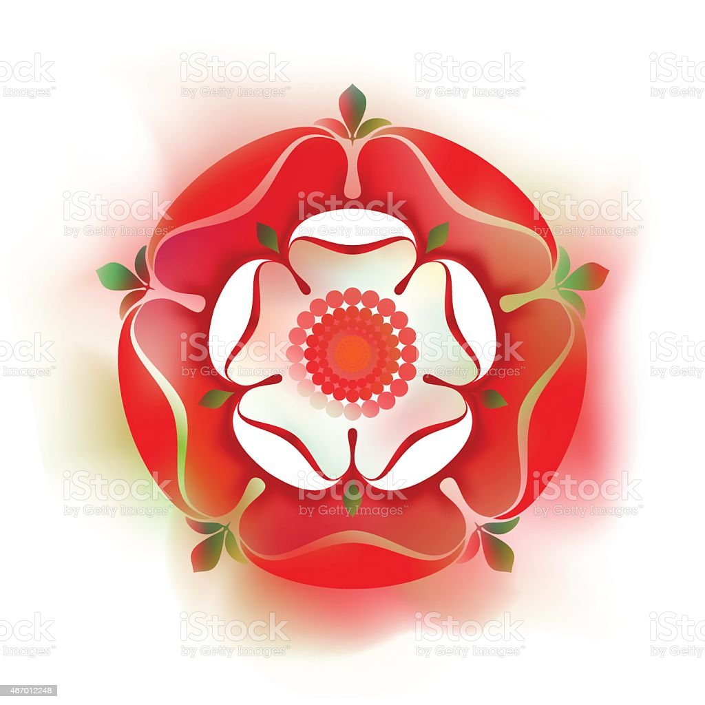 Tudor  Rose - vector illustration - watercolour style -  English Symbol vector art illustration