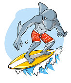 Tuff Furious Dolphin Surfer Surfing Water Wave Sport