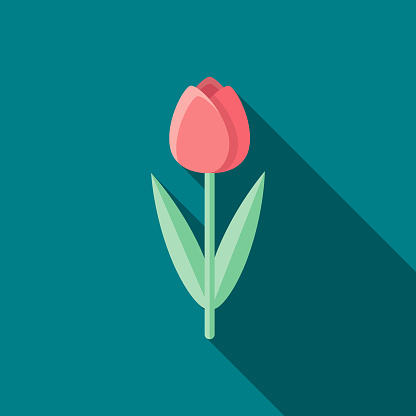 Tulip Flat Design Easter Icon with Side Shadow