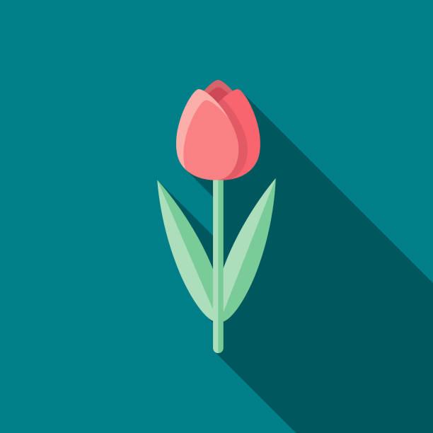 bildbanksillustrationer, clip art samt tecknat material och ikoner med tulip platt design påsk ikonen med side skugga - tulpaner