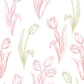 Tulip flower graphic color seamless pattern sketch illustration vector
