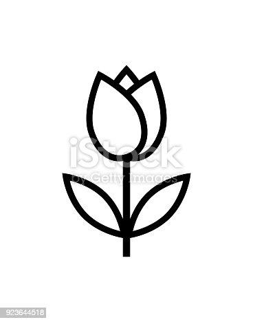 istock tulip flower icon 923644518