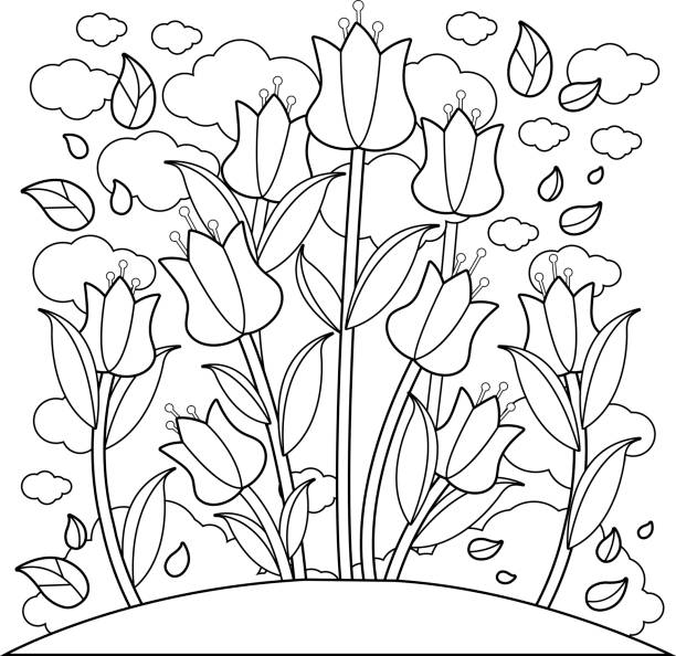 Coloring Book Page Vector Art Illustration
