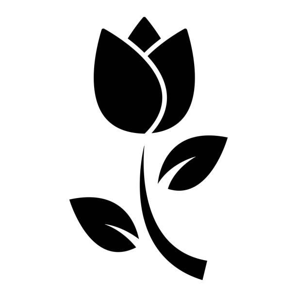 bildbanksillustrationer, clip art samt tecknat material och ikoner med tulip silhuett vektor - tulpaner