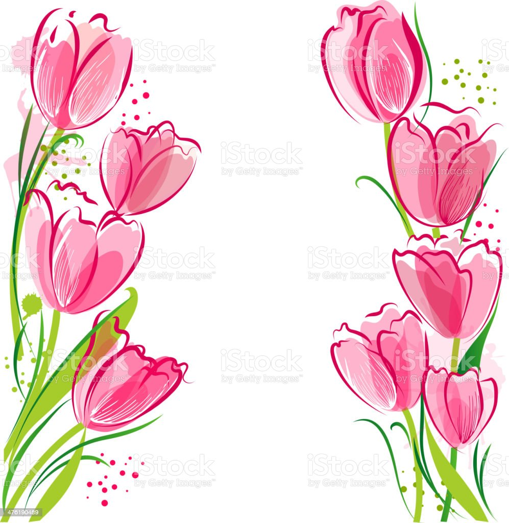 Tulips backgound vector art illustration