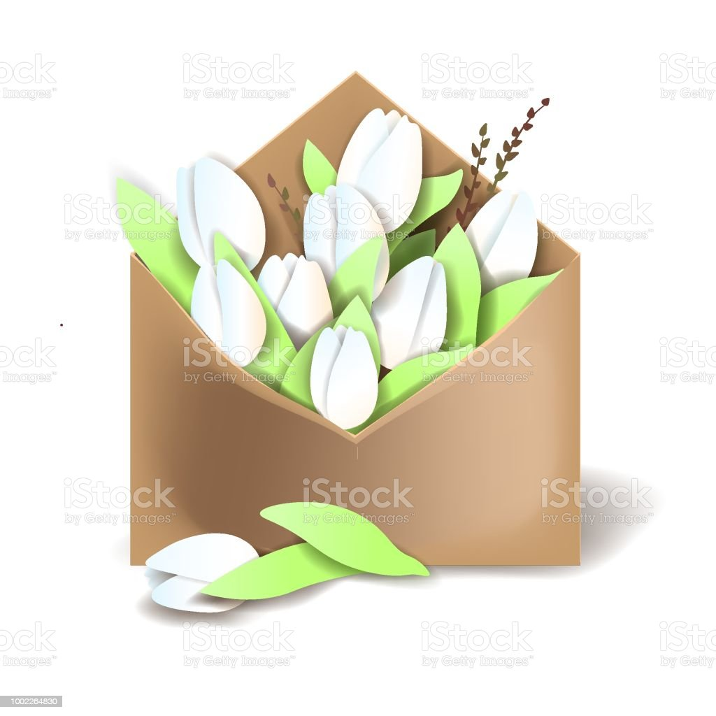 Tulips of white color in the paper envelope with springs and one flower separately lying векторная иллюстрация
