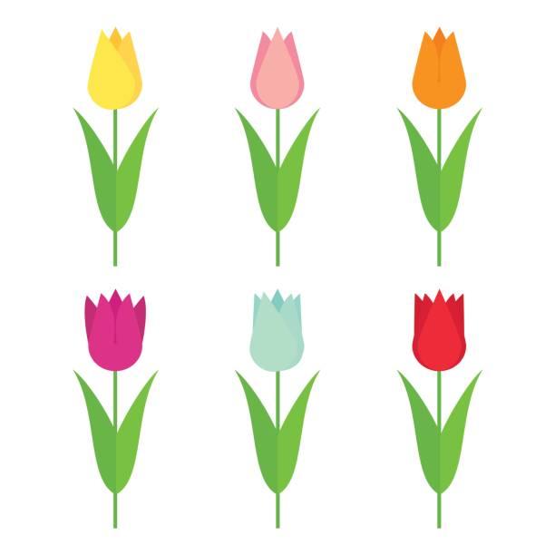 bildbanksillustrationer, clip art samt tecknat material och ikoner med tulpaner ange ikon. blommor samling isolerade på vit bakgrund. - tulpaner